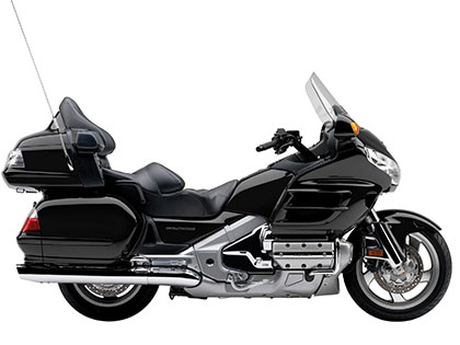 Gold Wing Black