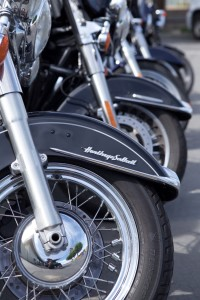 Rental Harley Davidsons lined up