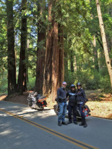 touring-ca-by-harley-davidson-5